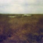 Marsh Waterway